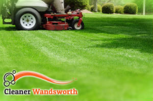 grass-cutting-wandsworth